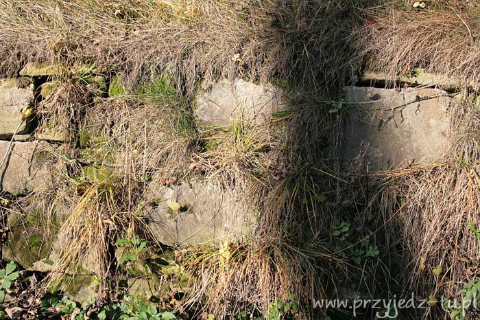 927.mur-oporowy-zespol-palacowo-parkowy-mycielskich-w-wisniowej(1).jpg