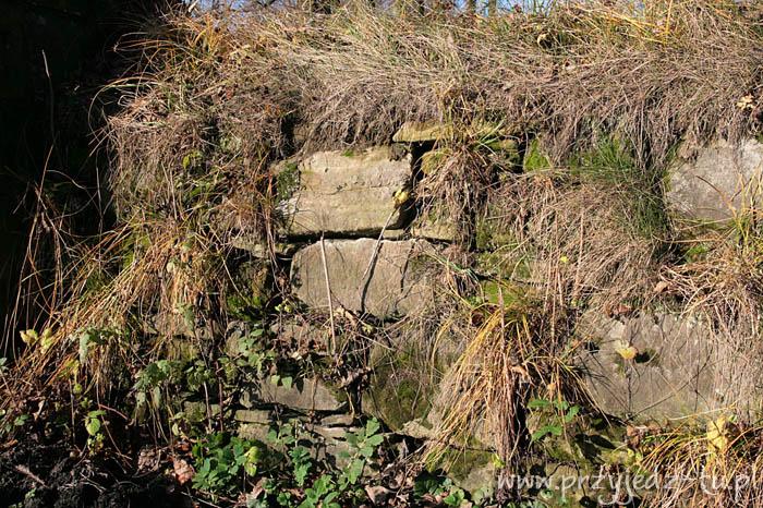 927.mur-oporowy-zespol-palacowo-parkowy-mycielskich-w-wisniowej(2).jpg