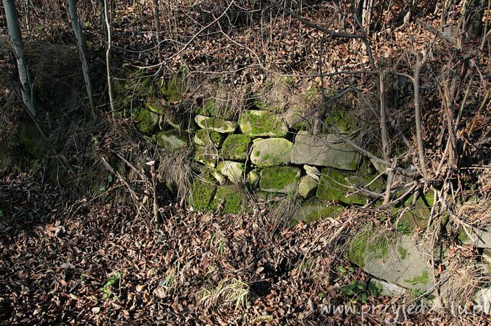 927.mur-oporowy-zespol-palacowo-parkowy-mycielskich-w-wisniowej(4).jpg