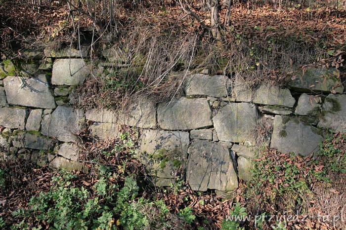 927.mur-oporowy-zespol-palacowo-parkowy-mycielskich-w-wisniowej(5).jpg