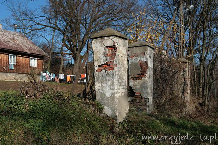 928.ogrodzenie-z-bramka-zespol-palacowo-parkowy-mycielskich-w-wisniowej(3).jpg